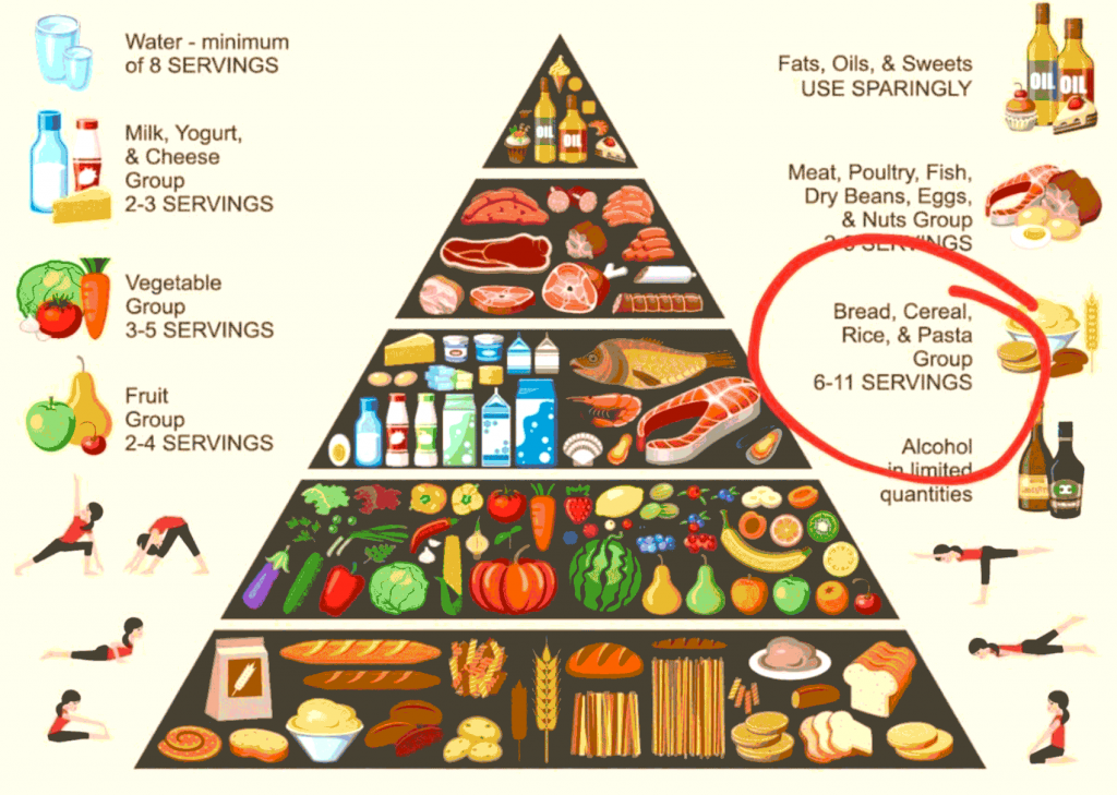 South Africa Dietary Guidelines diagram
